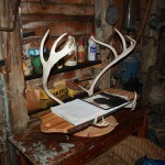Guestbook stand made from reindeer horns